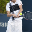 Sam Querrey in action during the game - Stock Photo