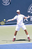 Ricardas Berankis in action during the game — Stock Photo