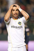 Juan Pablo Angel shows his frustration after missing a goal scoring opportunity during the game — Stock Photo