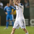 Постер, плакат: Robbie Keane during the game