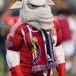 Chivas USA mascot before the Major League Soccer game between the New England Revolution and Chivas USA — Stock Photo