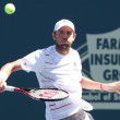 Mardy Fish in action during game — Stock Photo #18447829