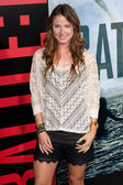 Vanessa Lee Evigan arrives at Columbia Pictures premiere — Stock Photo