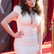 Kat Dennings arrives at the Los Angeles premiere — Stock Photo #18451227