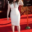 Kat Dennings arrives at the Los Angeles premiere — Stock Photo #18451307