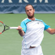 Xavier Malisse in action during the game — Foto de Stock