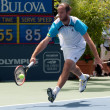 Xavier Malisse in action during the game — ストック写真