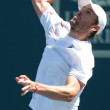 Mardy Fish in action during game — Stock Photo #18457559