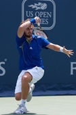 Ernests Gulbis in action during the game — Stock Photo