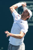 Mardy Fish in action during the game — Stock Photo