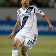 Mike Magee during the Major League Soccer game — Stockfoto
