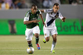 Darlington Nagbe and Juninho during the Major League Soccer game — Stock Photo