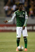 Kalif Alhassan in action during the Major League Soccer game — Stock Photo