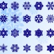 Snowflake set — Stock Vector #14699911