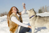 Young girl are playing with a dog of breed husky in the winter on the snow — Stok fotoğraf