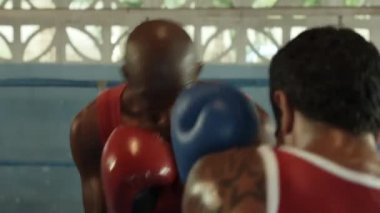 Sport and , two young men exercising and fighting in boxing gym — Stock Video