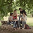 Stock Video: Group of four college students doing homework in park.