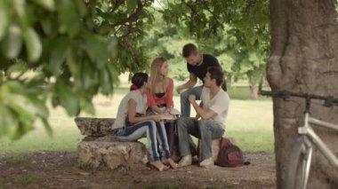 группа четырех студентов колледжа, делать домашнее задание в парке. — Стоковое видео