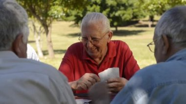 Group of senior men playing cards at park — Stock Video