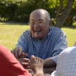 Stock Video: Group of senior men having fun and laughing in park