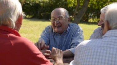 Group of senior men having fun and laughing in park — Stock Video