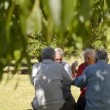 Stock Video: Old friends and leisure, group of four old men having fun and playing cards game at park