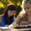 Stock Video: Two young women studying with book for university test in park.