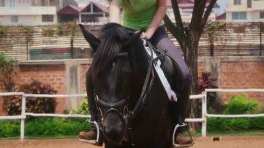 Beautiful girl riding black horse — Stock Video