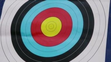 People shooting arrows — Stock Video