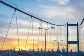 Driving throug Bosphorus Bridge — Stock Photo