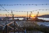 Cargo cranes working in the harbour at sunset rays — Stock Photo