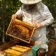 Beekeeper — Stock Photo #14250367