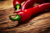 Chili peppers — Stock Photo