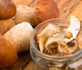 сушеные белые грибы — Стоковое фото