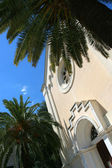 Old church and palm tree. — Stock Photo