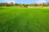 Golf field — Fotografia Stock
