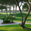 Golf course — Stockfoto #15784123
