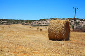 Hay bales — Foto Stock