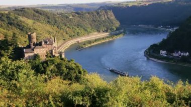 View on the rhine river with castle and vineyards — Stock Video