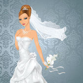 Beautiful bride. — Stock Vector