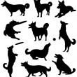 Set of silhouettes of a dog — Stock Vector