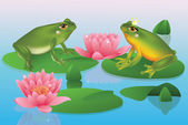 Two frogs sitting on a lake surrounded by water lillys. — Stock Vector