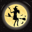 Witch on a broom. — Stock Vector