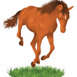 Isolated jumping horse. — Stock Vector