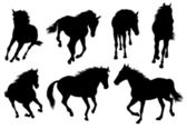 Set of a silhouette of a horse. — Stock Vector