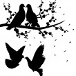 Stock Vector: Silhouettes of flying pigeons and of two pigeons sitting on branch of cherry blossom and kissing.