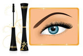 Mascara and a female eye with an ornament on the background. Effects used: transparency, clipping mask. — Stock Vector