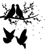Silhouettes of flying pigeons and of two pigeons sitting on the branch of cherry blossom and kissing. — Stock Vector