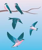 Zwei schlucken sitzen auf einem ast und flirten. drei schwalben fliegen in der nähe. — Stockvektor