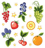 Set of summer fruits and berries. — Stock Vector